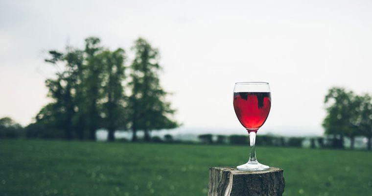 旨仙長日記【13日目】2018年 日本全国の紹興酒・白酒好きな人たちと出会うには。